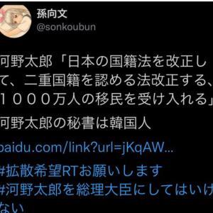 【悲報】河野太郎氏さん過去に「国籍法を改定し2重国籍を容認。1,000万人の移民受け入れを進める」コメントしていた!人民日報インタビューより