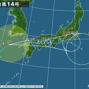 台風14号ホンマに来てるの?って思う位何事もなし