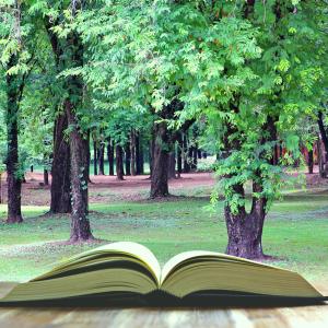 生澤愛子さんの著書『四つ葉のクローバーを10万本見つけた少女の物語』を読んで、今の自分に欠けているものを考えた