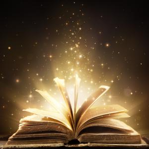 『無我の見方』の内容と読んだ感想、おすすすめの読者【アルボムッレ・スマナサーラ著】