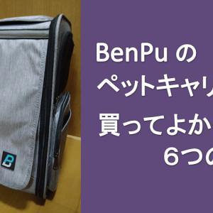 BenPu のペットキャリーバッグを買ってよかった6つの理由