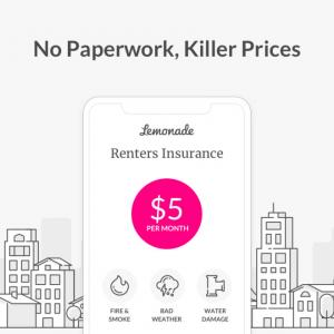 最安、最速で手続き完了。住宅保険、ペット保険をオンライン契約出来るレモネード(lemonade)の先進性をご紹介!
