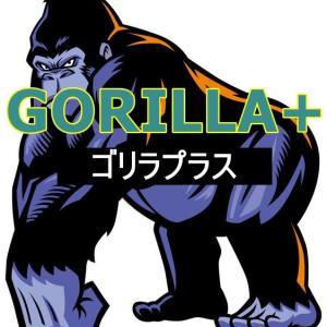 【年利200%】GORILLA+(ゴリラプラス)EAで爆益実現!?力みなぎるその内容を刮目せよ!