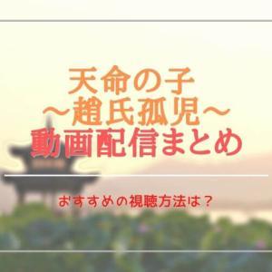 中国(華流)ドラマ:天命の子を無料視聴できる動画配信サブスクは?字幕・吹き替えは?