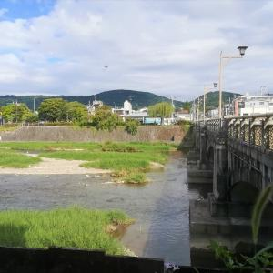 【京都・七条】和やかな鴨川ビュー付き!橋の袂にあるヴィーガンカフェ「Veg Out」と新たなアーシング場所♡