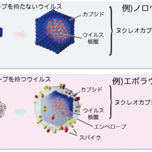 新型コロナウイルスにもプラズマが効果バツグン