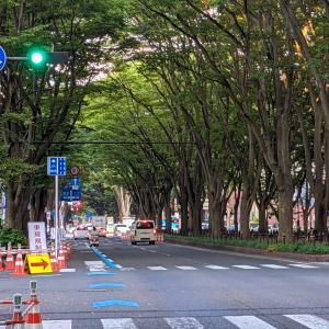 定禅寺通りで車道を制限する大規模社会実験中。自転車には嬉しい専用道が設置!