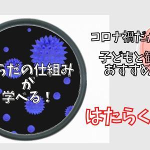 【はたらく細胞!!】でウイルスを知る!コロナ禍だからこそ子どもと観たいアニメ(2022年1月に第2期放送決定)