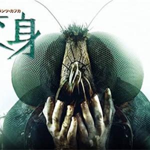 謎映画「カフカ〜変身〜」は、原作のストーリーを忠実に再現した、世にも奇妙な不条理映画だった!あらすじ、ネタバレ無し感想