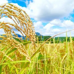日 本 の 農 業 を 守 ろ う