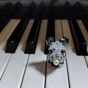 今から帰るぞ❗ ピアノだぁ!