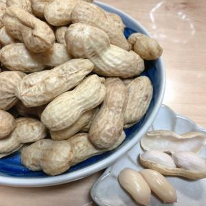 生落花生『おおまさり』をお取り寄せ!千葉県産・人気の品種を実食!