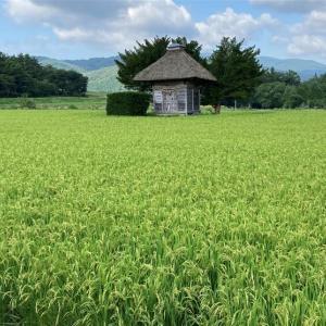 遠野詣り 懐かしい美しの村 16