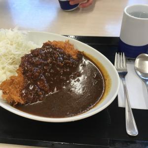 かつや 大阪泉佐野店 (カツカレー)