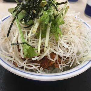 かつや 大阪泉佐野店(塩カツ丼)