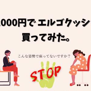 エルゴクッション 口コミレビュー【2000円でエルゴが買える!?】