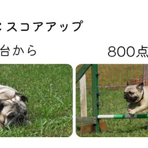 独学TOEIC 725→820(1か月)までの勉強方法・時間