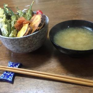 いつかの丼物 野菜天丼♪
