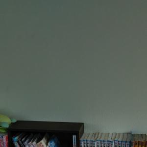 読書家の本棚☻**o-19