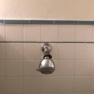 [サンフランシスコ] シャワーヘッド? / Shower head