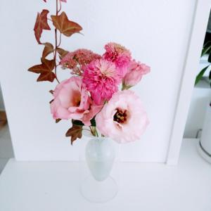 今週のお花 ピンクが可愛い