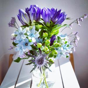 おはようございます!昨日載せた今週のお花の動画バージョンです#お花の定期便 #hito...