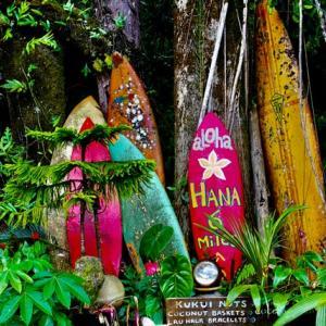 【ハワイ】モノレール『HART』いつできるの?