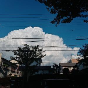 今日は夏に戻ったような雲です☁️