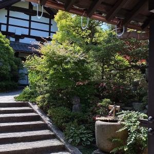 京都急ぎ旅・・東福寺へ