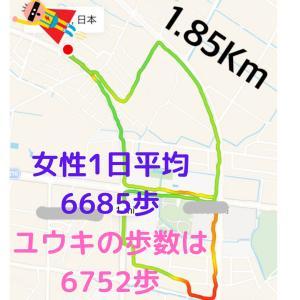 R3.9.24 ウォーキング記録