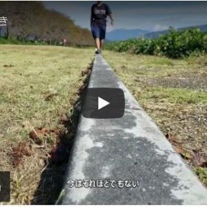 --- 直線歩き(動画あり)