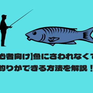 【初心者向け】魚にさわれなくても釣りができる方法を解説!