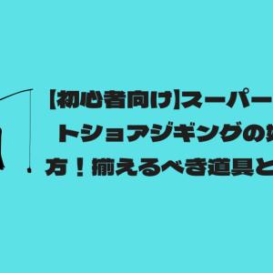 【初心者向け】スーパーライトショアジギングの始め方!揃えるべき道具とは?