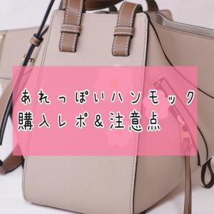 【○○風】例のバッグ、買ってみた【ハンモック】
