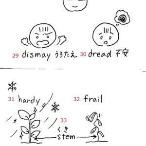 英検準1級 単語絵カードSet4 No.25~35 ≪解答≫