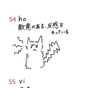 英検準1級 単語絵カードSet7 No.52~56 ≪問題≫