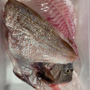 ポケットマルシェで鯛を買ってみた。