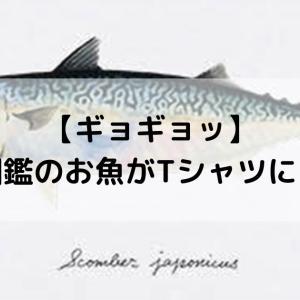 【ギョギョギョッ】図鑑の魚がTシャツにっ 160種!?