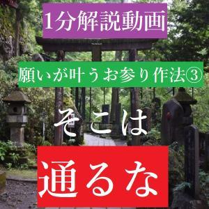 そこ歩いたら願い叶いません【願いが叶う神社のお参り 第三回】
