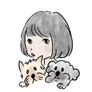 自己紹介(犬編)