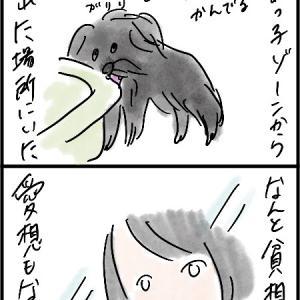 犬①との出会い2