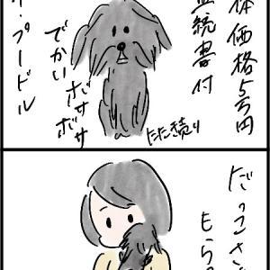 犬①との出会い3