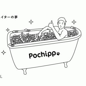 アフィリエイト初心者にやさしい「Pochipp」(ポチップ)を導入しました!初心者の視点から設定方法をレビューします!
