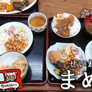 【多気町】「せいわの里 まめや」家庭的な豆料理バイキング!ランチを食べに行ってきた!(メニュー・営業時間)
