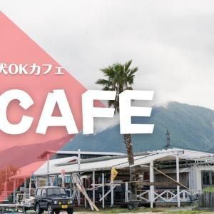 【ペット可】滋賀県にある琵琶湖沿いのおすすめ犬OKカフェ