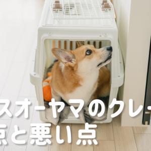 【犬】アイリスオーヤマのクレート購入レビュー。車移動時はクレートがやっぱり便利!