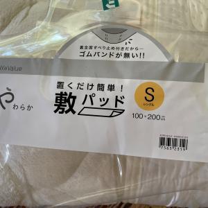 買い物へ・・・ヽ(*'-^*)。