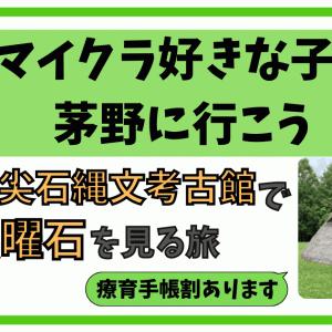 長野県茅野市【尖石縄文考古館】で本物の黒曜石を見る旅