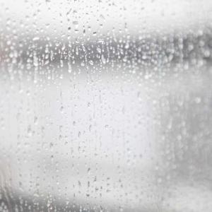 きょうは朝から雨です