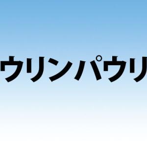 天理「ハウリンパウリン」の店舗情報と口コミ評判